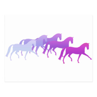 Many Horses purples Post Cards