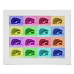 Many Hues of Hedgehogs Poster