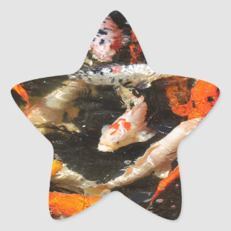 Many koi carp multicolor star sticker
