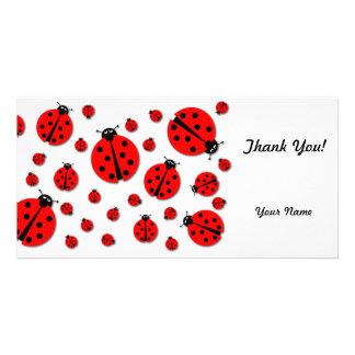 Many Ladybugs Shadows Card