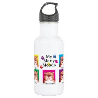 Many Moods 18oz Water Bottle