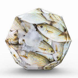 Many small caught dead fish with ice on market acrylic award