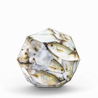 Many small caught dead fish with ice on market award