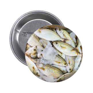 Many small caught dead fish with ice on market button
