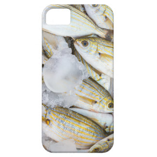 Many small caught dead fish with ice on market iPhone SE/5/5s case