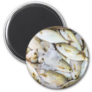 Many small caught dead fish with ice on market magnet
