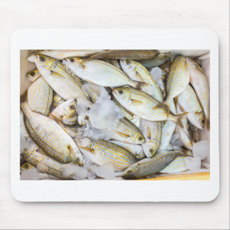 Many small caught dead fish with ice on market mouse pad