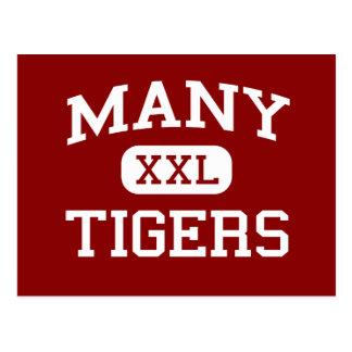Many - Tigers - Many High School - Many Louisiana Postcard