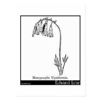 Manypeeplia Upsidownia. Postcard