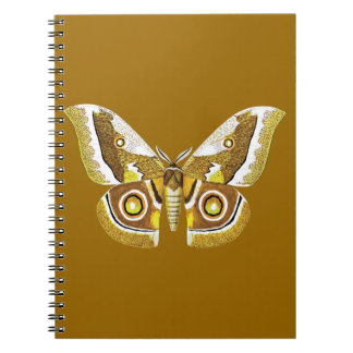 MANYTHANKS BUTTERFLY GRAPHIC BROWNS CREAMS LOVELY SPIRAL NOTE BOOKS