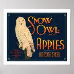 Manzanas de la marca del búho de la nieve posters