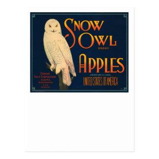 Manzanas de la marca del búho de la nieve postal