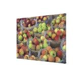 Manzanas de Macintosh del Estado de Nuevo York en  Lona Envuelta Para Galerias