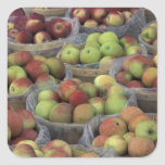 Manzanas de Macintosh del Estado de Nuevo York en Calcomanías Cuadradass Personalizadas