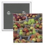Manzanas de Macintosh del Estado de Nuevo York en  Pin