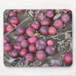 Manzanas del otoño tapete de raton