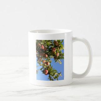 Manzanas del valle del Hudson Taza