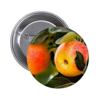 Manzanas del verano pins