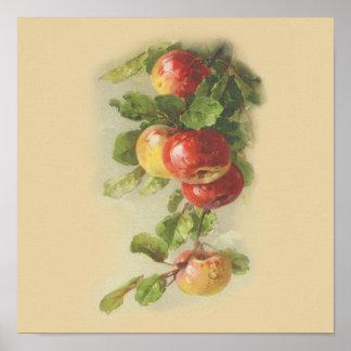 Manzanas del vintage póster