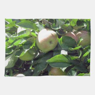 Manzanas en ramas de árbol toallas de cocina