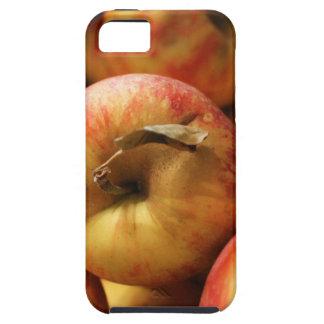 Manzanas Funda Para iPhone SE/5/5s
