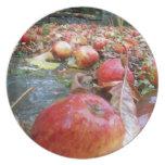 Manzanas Plato De Comida
