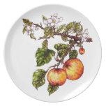 Manzanas Platos De Comidas
