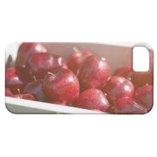 Manzanas recientemente escogidas en bandeja iPhone 5 fundas