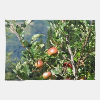 Manzanas rojas en ramas de árbol toalla de cocina