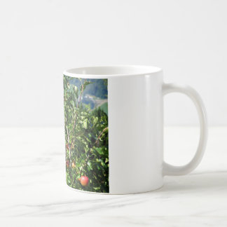 Manzanas rojas en ramas de árbol taza básica blanca