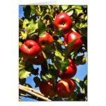 Manzanas rojas tarjeton