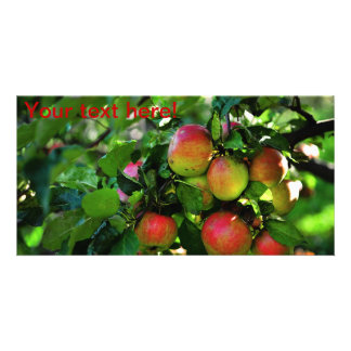 Manzanas Tarjetas Personales Con Fotos