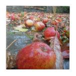 Manzanas Teja Cerámica