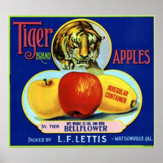 Manzanas Watsonville California del tigre Póster