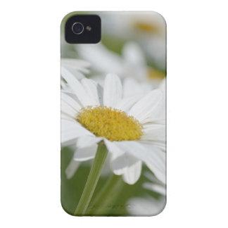 Manzanilla iPhone 4 Case-Mate Cobertura