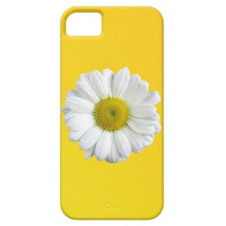 Manzanilla iPhone 5 Coberturas