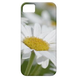 Manzanilla iPhone 5 Case-Mate Cobertura
