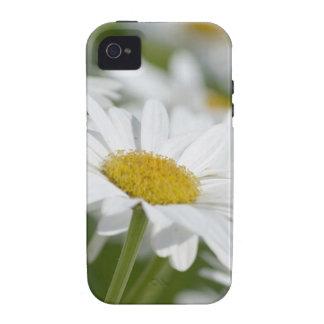 Manzanilla Vibe iPhone 4 Carcasas