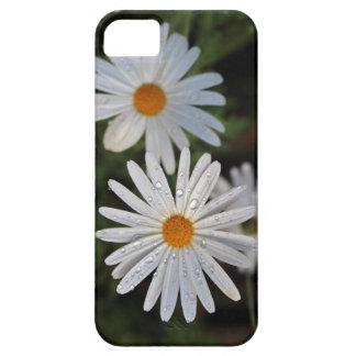 Manzanilla IPhone iPhone 5 Case-Mate Protector