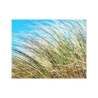 Manzanita Beach Grasses, Coastal Nature Canvas Print