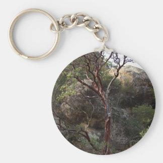 Manzanita Tree Basic Round Button Keychain