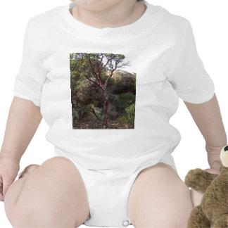Manzanita Tree Bodysuit