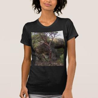 Manzanita Tree Tee Shirts
