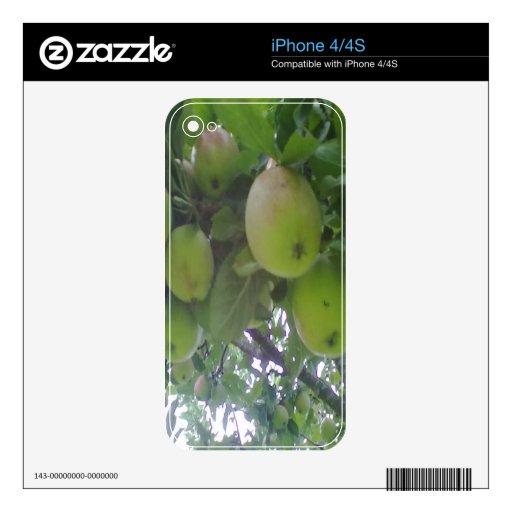 manzano calcomanías para el iPhone 4S