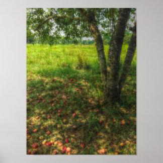 Manzano de Mississippi Impresiones