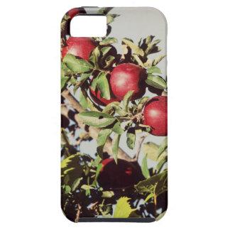 Manzano del vintage iPhone 5 Case-Mate protectores