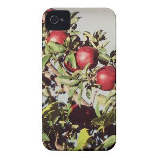 Manzano del vintage iPhone 4 Case-Mate cobertura
