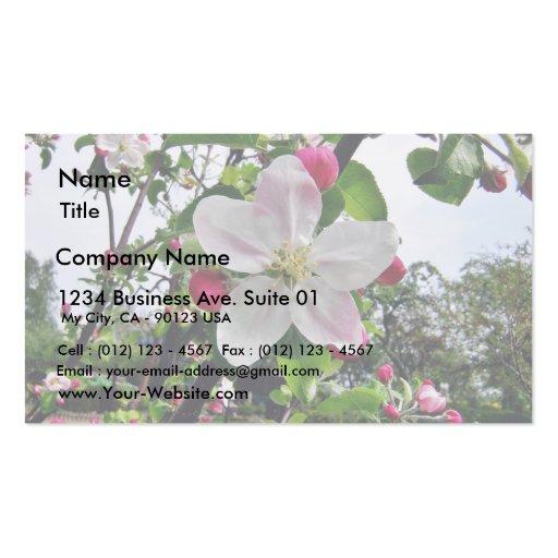 Manzano En flor Tarjetas De Visita
