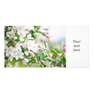 Manzano floreciente tarjeta fotografica personalizada