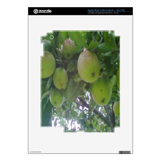 manzano iPad 3 skin